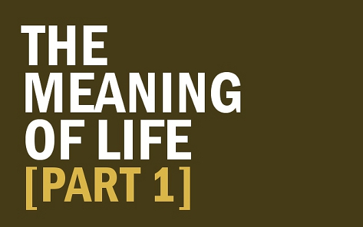 The meaning of life here are 4 options sheridan voysey